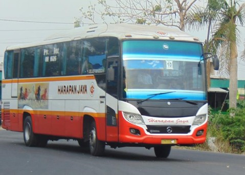 Gambar Bus Harapan Jaya
