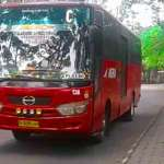 Rute dan Harga Tiket Bus Agra Mas Terbaru Saat Ini