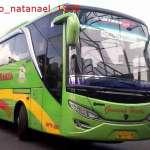 Harga Tiket dan Jadwal Bus Gunung Harta Terbaru