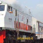 Jadwal dan Harga Tiket Kereta Bogor Paledang