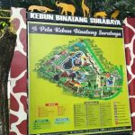 Harga Tiket Masuk Kebun Binatang Surabaya Terbaru