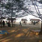 Harga Tiket Masuk Pantai Cemara Tuban